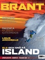 Brant 1/2012