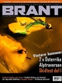 Brant 4/2006