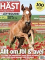 Hstmagazinet
