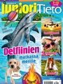 JunioriTieto 6/2017