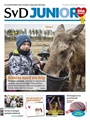 SvD Junior 11/2018